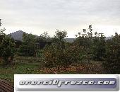 ARRIENDO CASA-PARCELA 3