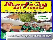 Artistas musicos charros en chile 976260519