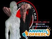 Curso de Kyusho Jutsu con técnicas de boxeo y karate